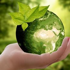 duurzaamheidswijzer
